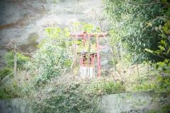 日奈久_190217_0025